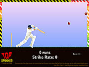 Click to Play Top Spinner Cricket